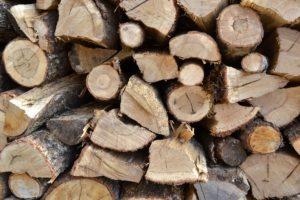 buche de bois